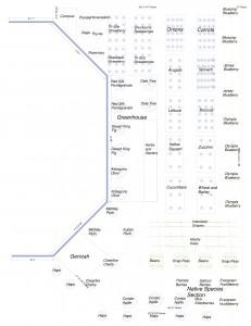 CSS TLC Garden Design